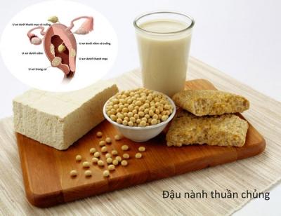 Mối quan hệ giữa sữa đậu nành và u xơ tử cung