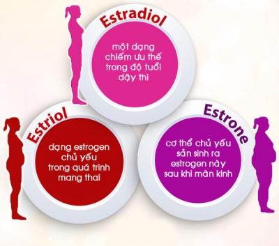 6 yếu tố tăng nguy cơ mắc u xơ tử cung