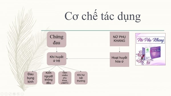 co-che-tac-dung-cua-nu-phu-khang